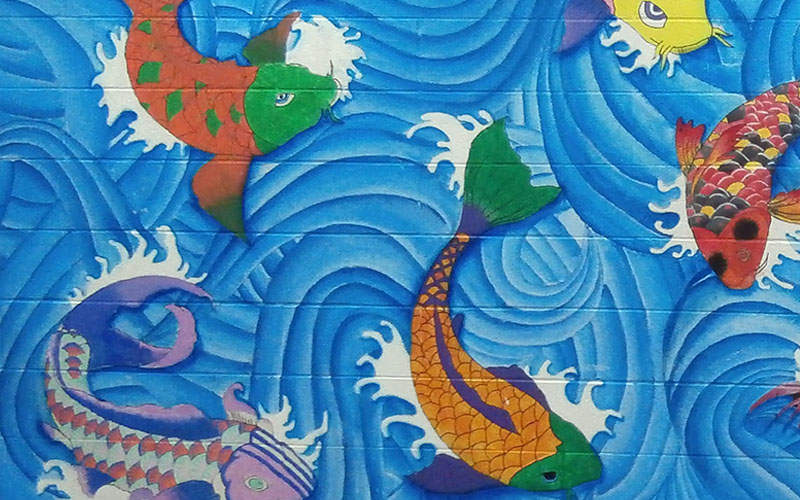 Photo of mural featuring koi fish in water